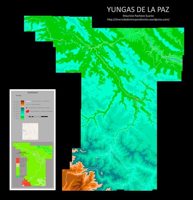 DEP-yungas-Bolivia-entrada
