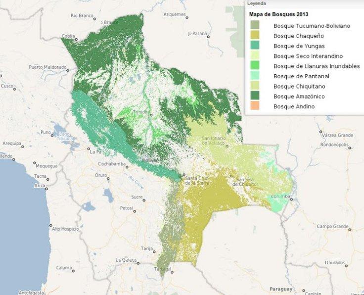 bosques-bolivia
