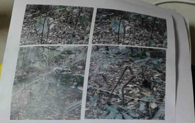 Dale a la foto para escuchar el audio del omento que se informa sobre el hallazgo de indicios de pueblos no contactados en la zona de exploración.